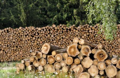 Stückholz- Holzvergaser Heizung Holz